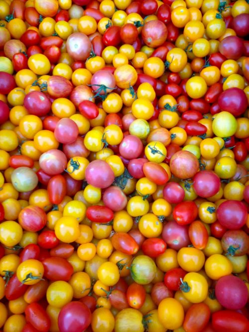 Sedona Farmers Community Market Buy Local Organic Food